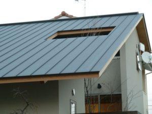 田尻町の植栽が屋根を貫く家