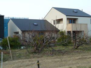 大きくてシンプルな家