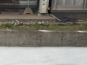 ブロック塀の鉄骨をカット