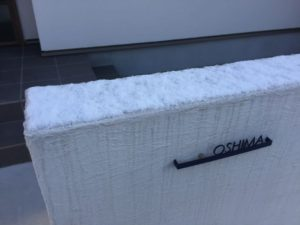 初雪(その2)