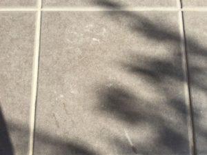 アズマ工業「ブラッシングスポンジ AZ655」で玄関タイルや塀を掃除