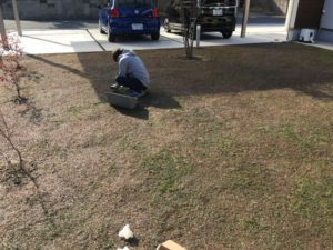 三人で庭の草取りを行いました