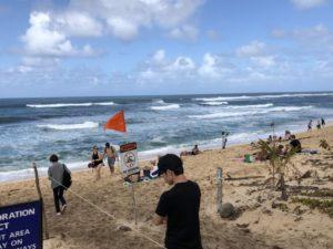 ハワイ旅行6日目(2019年2月15日)その1