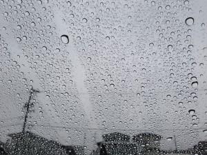 雨もなかなかいいもんです